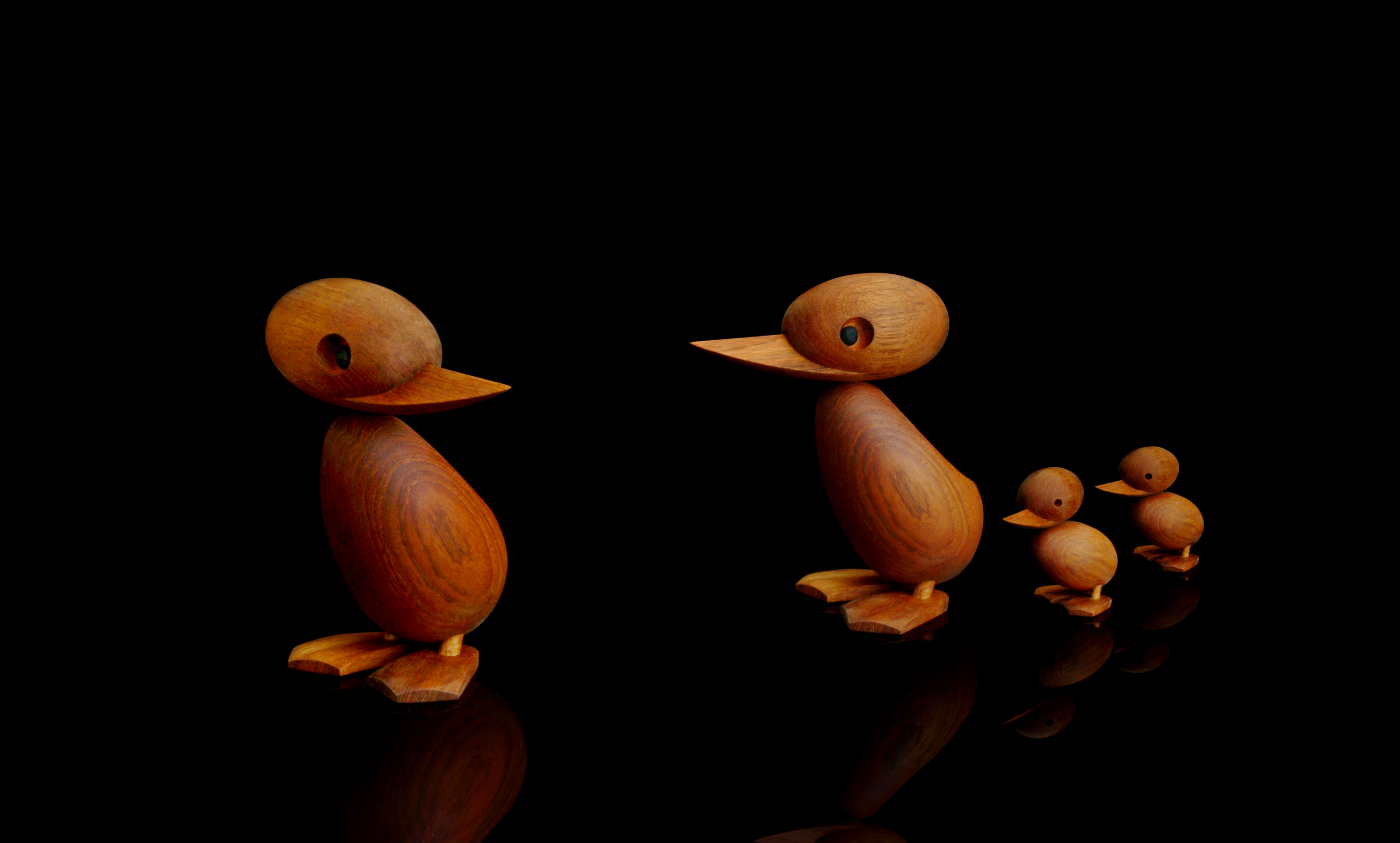 do13-cooper-architectmade-duck